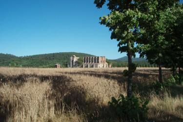 Abbazia di S.Galgano (Siena)